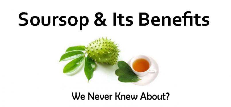 Alavi Herbs And Nutrition - Soursopindia com